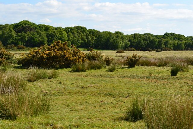 Badminston Common
