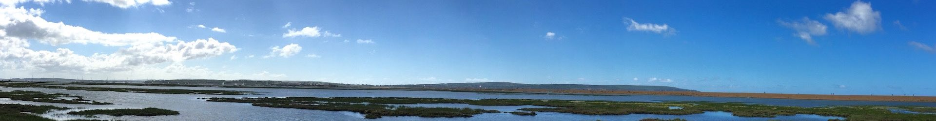 Field Trip – Keyhaven: A winter walk for wildfowl and waders