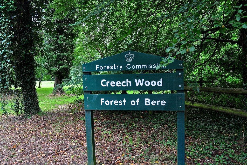 Creech Wood