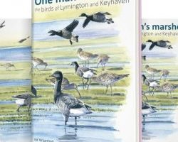 One Man's Marshes – the birds and birders of Keyhaven and Lymington